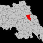 Comuna Popricani