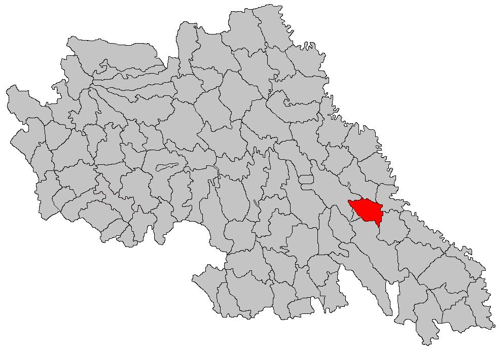 Comuna Tomesti