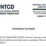 PNȚCD o susține pe Viorica Dăncilă la alegerile prezidențiale